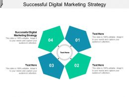 Successful Digital Marketing Strategy Ppt Powerpoint Presentation File Example Cpb