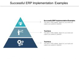 Successful ERP Implementation Examples Ppt Powerpoint Presentation Model Master Slide Cpb