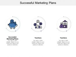 Successful Marketing Plans Ppt Powerpoint Presentation Inspiration Example Cpb