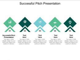 Successful Pitch Presentation Ppt Powerpoint Presentation File Influencers Cpb
