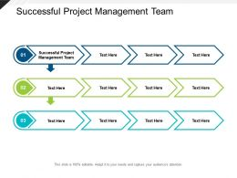 Successful Project Management Team Ppt Powerpoint Presentation Professional Cpb