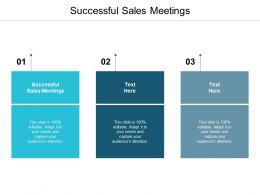 Successful Sales Meetings Ppt Powerpoint Presentation Styles Professional Cpb
