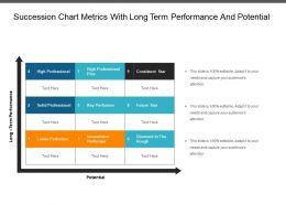 Succession Chart Metrics With Long Term Performance And Potential