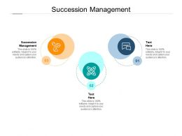 Succession Management Ppt Powerpoint Presentation Gallery Graphics Cpb