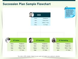 Succession Plan Sample Flowchart Ppt Powerpoint Presentation Show Styles
