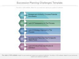 Succession Planning Challenges Template Powerpoint Slides Themes