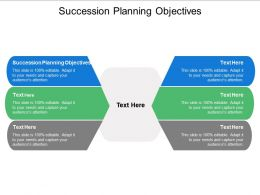 Succession Planning Objectives Ppt Powerpoint Presentation Icon Visual Aids Cpb