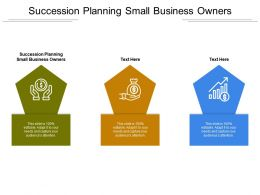 Succession Planning Small Business Owners Ppt Powerpoint Presentation Model Example Cpb