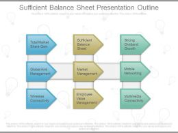 Sufficient Balance Sheet Presentation Outline