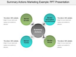 Summary Actions Marketing Example Ppt Presentation