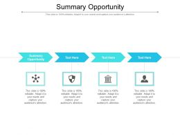 Summary Opportunity Ppt Powerpoint Presentation Slides Example File Cpb