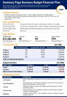 Summary Page Business Budget Financial Plan Presentation Report Infographic PPT PDF Document