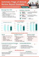 Summary Page Of Annual Review Report Example Presentation Report PPT PDF Document