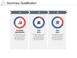 Summary Qualification Ppt Powerpoint Presentation Infographic Template Layout Cpb
