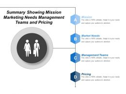 Summary Showing Mission Marketing Needs Management Teams And Pricing