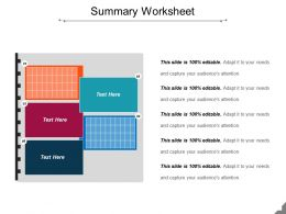 Summary Worksheet Ppt Sample Presentations