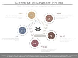 Summery Of Risk Management Ppt Icon