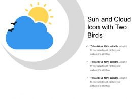Sun And Cloud Icon With Two Birds
