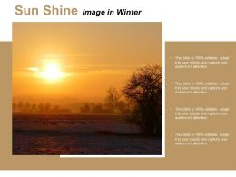 Sun Shine Image In Winter