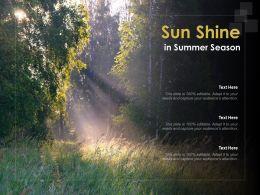 Sun Shine In Summer Season