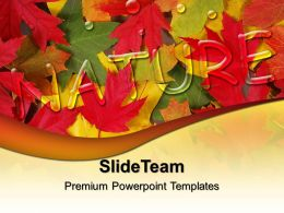 Super Nature Powerpoint Templates Autumn Leaves Image Ppt Design