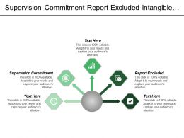 Supervision Commitment Report Excluded Intangible Assets Previously Omitted