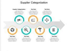 Supplier Categorization Ppt Powerpoint Presentation Designs Cpb