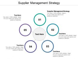 Supplier Management Strategy Ppt Powerpoint Presentation Pictures Microsoft Cpb