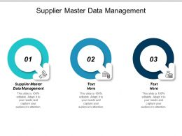 Supplier Master Data Management Ppt Powerpoint Presentation Visual Aids Layouts Cpb