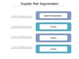 Supplier Risk Segmentation Ppt Powerpoint Presentation Layouts Graphics Example Cpb