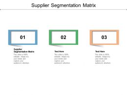 Supplier Segmentation Matrix Ppt Powerpoint Presentation Layouts Show Cpb