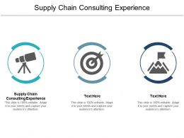 Supply Chain Consulting Experience Ppt Powerpoint Presentation Icon Outfit Cpb
