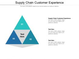Supply Chain Customer Experience Ppt Powerpoint Presentation Gallery Gridlines Cpb