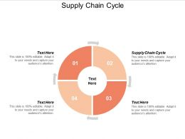 Supply Chain Cycle Ppt Powerpoint Presentation Summary Show Cpb