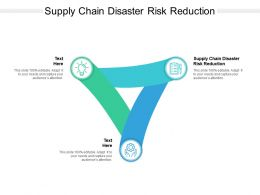 Supply Chain Disaster Risk Reduction Ppt Powerpoint Presentation Infographic Template File Cpb