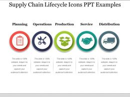 Supply Chain Lifecycle Icons Ppt Examples