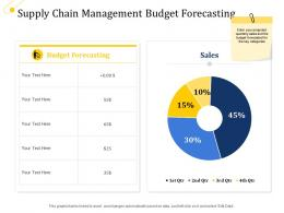 Supply Chain Management Budget Forecasting Ppt Slides Layout