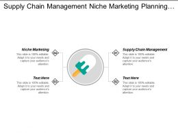 Supply Chain Management Niche Marketing Planning Competitive Analysis Cpb