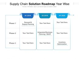 Supply Chain Solution Roadmap Year Wise