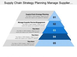 Supply Chain Strategy Planning Manage Supplier Partner Engagement
