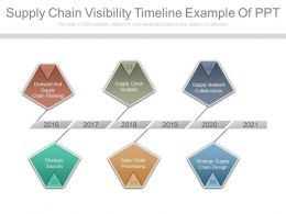 Supply Chain Visibility Timeline Example Of Ppt