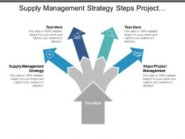 Supply Management Strategy Steps Project Management Organizational Processes Cpb