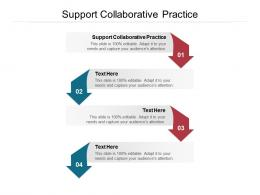 Support Collaborative Practice Ppt Powerpoint Presentation Slides Inspiration Cpb
