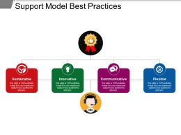 Support Model Best Practices Ppt Infographic Template