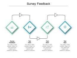 Survey Feedback Ppt Powerpoint Presentation Slides Examples Cpb