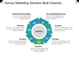 Survey Marketing Services Multi Channel Strategies Financial Services Marketing Cpb