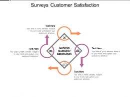 Surveys Customer Satisfaction Ppt Powerpoint Presentation Professional Cpb