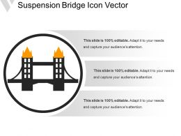 Suspension Bridge Icon Vector