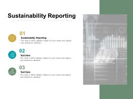 Sustainability Reporting Ppt Powerpoint Presentation Professional Sample Cpb