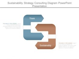 Sustainability Strategy Consulting Diagram Powerpoint Presentation